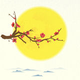 Plum tree flowering with round moon Stock Image