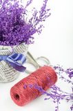 Plum twine and purple branches Stock Photos