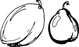 Plum. Vector illustration. Stock Photo
