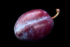Plum vegetable on black Royalty Free Stock Photo