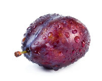Plum with water drops Royalty Free Stock Images