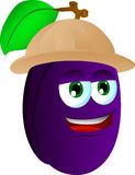 Plum wearing scout or explorer hat Stock Image