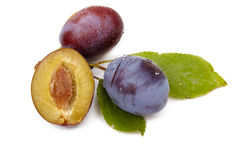 Plum on white Stock Photography