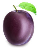 Plum  on white backgroun with clippin path Royalty Free Stock Photo