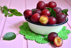 Plum in a white bowl. Stock Photo