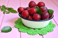 Plum in a white bowl. Stock Image