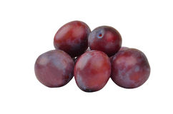 Plum on white Royalty Free Stock Images