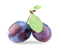 Plum With Leaves Stock Photo
