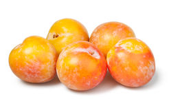 Plum Yellow Group Royalty Free Stock Images