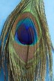 Pluma 2 del arco iris Fotografía de archivo libre de regalías