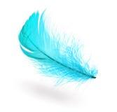 Pluma azul clara Fotografía de archivo