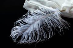 Pluma blanca de la avestruz y tela blanca fotografía de archivo libre de regalías