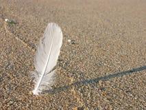 Pluma blanca en la arena Imagenes de archivo