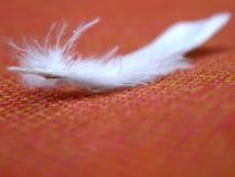 Pluma blanca y tela anaranjada Fotografía de archivo libre de regalías