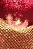 Pluma de la Navidad con las estrellas el caer Fotografía de archivo