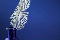 Pluma de la pluma foto de archivo libre de regalías