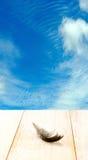 Pluma de pájaro de la imagen en la tabla de madera en fondo del cielo azul Fotos de archivo