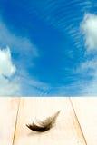 Pluma de pájaro en la tabla de madera en fondo del cielo azul Foto de archivo libre de regalías