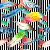 Pluma de pájaro de la acuarela del ala Modelo inconsútil del fondo Textura de la impresión del papel pintado de la tela fotos de archivo libres de regalías