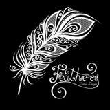 Pluma decorativa sin igual del vector Foto de archivo