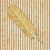 Pluma del bosquejo, fondo del vintage Imagen de archivo libre de regalías