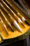 Pluma del cepillo Foto de archivo libre de regalías