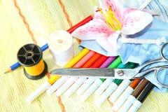 Pluma del color en el bolso Foto de archivo