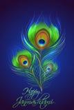 Pluma del pavo real en el fondo de Janmashtami Imagen de archivo