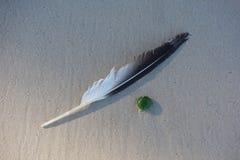 Pluma en la arena Foto de archivo libre de regalías