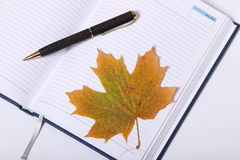 Pluma negra que miente en un cuaderno Hoja de arce amarilla Fotos de archivo libres de regalías