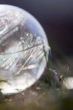 Pluma que brilla intensamente imágenes de archivo libres de regalías