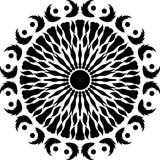 Pluma redonda del diseño, hojas comunes del diseño blanco y negro, redondo alas de los pájaros, pluma de pájaro libre illustration