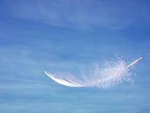 Pluma y cielo - ligereza, concepto de la suavidad Fotos de archivo