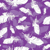 Plumage background seamless pattern vector. Stock Photo