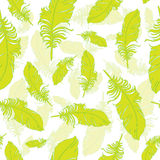 Plumage background seamless pattern vector. Royalty Free Stock Photography