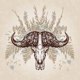 Plumagem envelhecida vintage do crânio do búfalo Imagens de Stock
