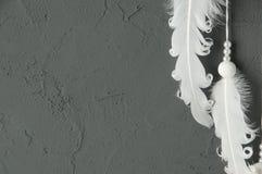 Plumas blancas en gris Foto de archivo libre de regalías