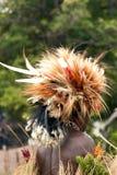 Plumas de aves del paraíso del guerrero del Papuan que llevan Foto de archivo