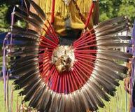 Plumas de cola Imagen de archivo libre de regalías