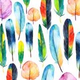 Plumas de la acuarela fijadas Ejemplo dibujado mano del vector con las plumas coloridas Fotografía de archivo