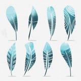 Plumas de la acuarela fijadas Ilustración drenada mano del vector libre illustration