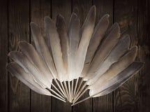 Plumas de la paloma fotos de archivo