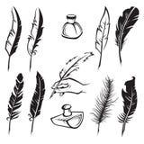 Plumas de la pluma Fotografía de archivo