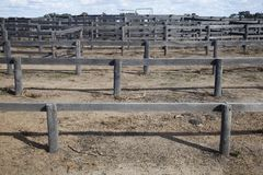 Plumas de madera del rancho de ganado Imagen de archivo libre de regalías