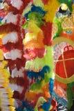Plumas del carnaval Foto de archivo libre de regalías
