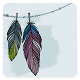 Plumas del invierno libre illustration