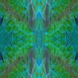 Plumas del Macaw del arlequín Imagen de archivo
