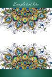 Plumas del pavo real, diseño del vector de la cubierta Foto de archivo