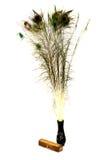 Plumas del pavo real en un florero Imagen de archivo libre de regalías