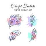 Plumas del vector fijadas Elementos étnicos dibujados mano Pluma incompleta Fotos de archivo